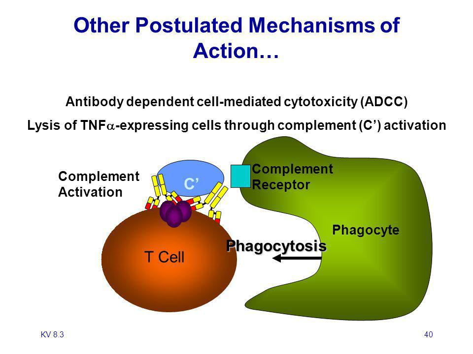 KV 8.340 Other Postulated Mechanisms of Action… Antibody dependent cell-mediated cytotoxicity (ADCC) Lysis of TNF -expressing cells through complement