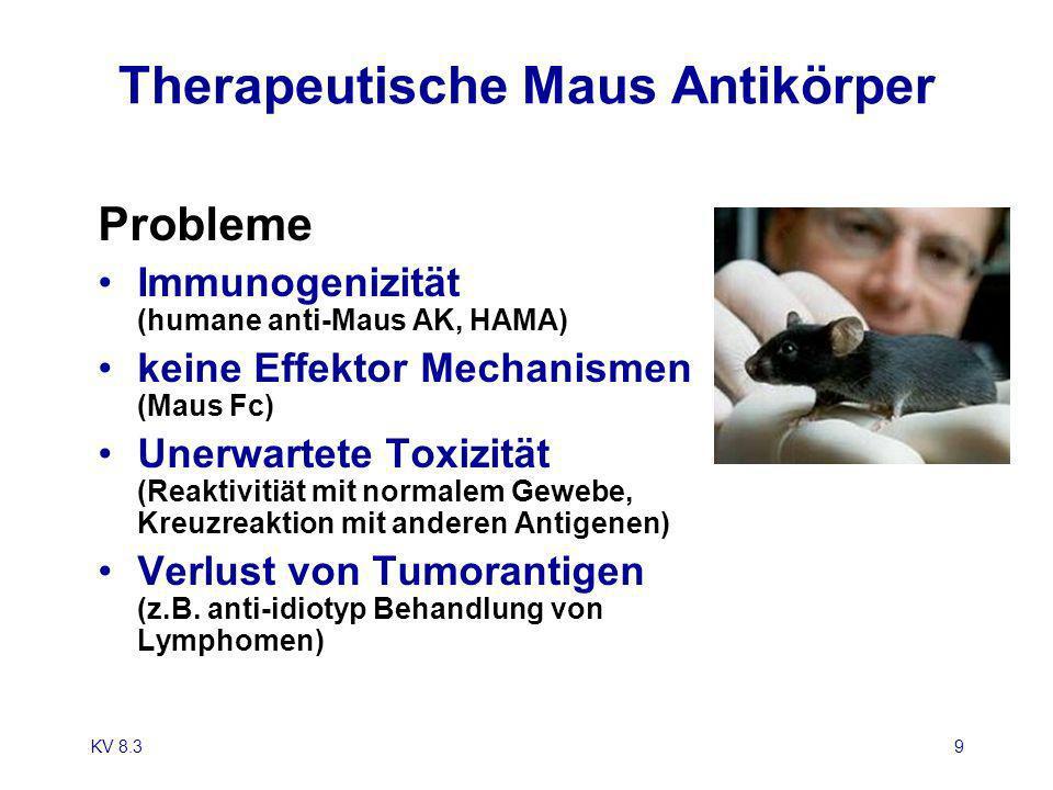 KV 8.39 Therapeutische Maus Antikörper Probleme Immunogenizität (humane anti-Maus AK, HAMA) keine Effektor Mechanismen (Maus Fc) Unerwartete Toxizität
