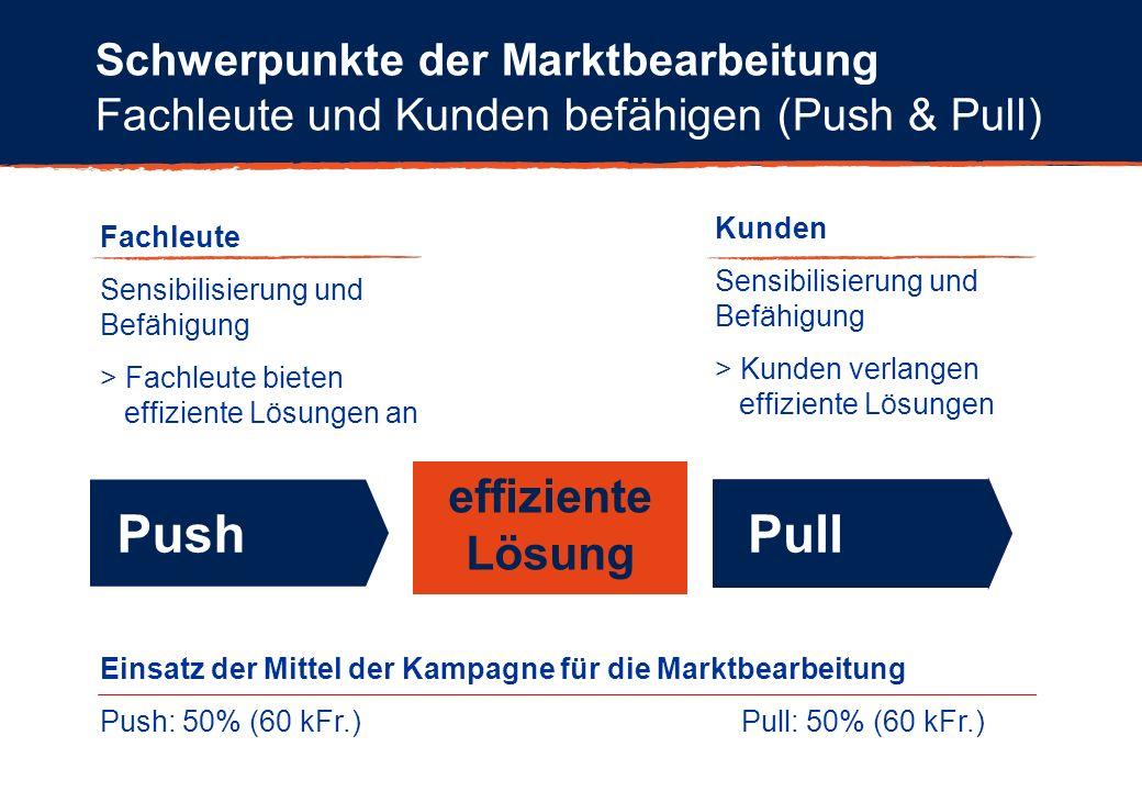 Schwerpunkte der Marktbearbeitung Fachleute und Kunden befähigen (Push & Pull) effiziente Lösung PushPull Einsatz der Mittel der Kampagne für die Mark