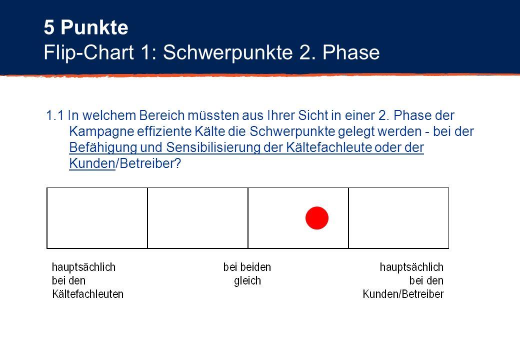 Flip-Chart 1: Schwerpunkte 2. Phase 1.1 In welchem Bereich müssten aus Ihrer Sicht in einer 2. Phase der Kampagne effiziente Kälte die Schwerpunkte ge
