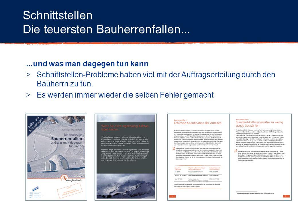 Beispiel Marktbearbeitung Beitrag Swiss Shop: SDV (Detaillistenverband) Artikel im Swiss Shop > Beilage in der Schweizerischen Gewerbezeitung (Auflage 107000)