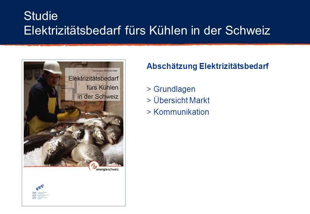Studie Elektrizitätsbedarf fürs Kühlen in der Schweiz Abschätzung Elektrizitätsbedarf > Grundlagen > Übersicht Markt > Kommunikation