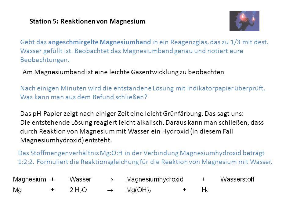 Station 5: Reaktionen von Magnesium Gebt das angeschmirgelte Magnesiumband in ein Reagenzglas, das zu 1/3 mit dest. Wasser gefüllt ist. Beobachtet das