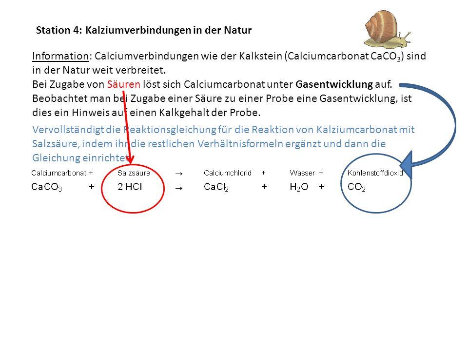 Station 4: Kalziumverbindungen in der Natur Information: Calciumverbindungen wie der Kalkstein (Calciumcarbonat CaCO 3 ) sind in der Natur weit verbre