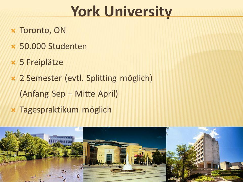 York University Toronto, ON 50.000 Studenten 5 Freiplätze 2 Semester (evtl. Splitting möglich) (Anfang Sep – Mitte April) Tagespraktikum möglich
