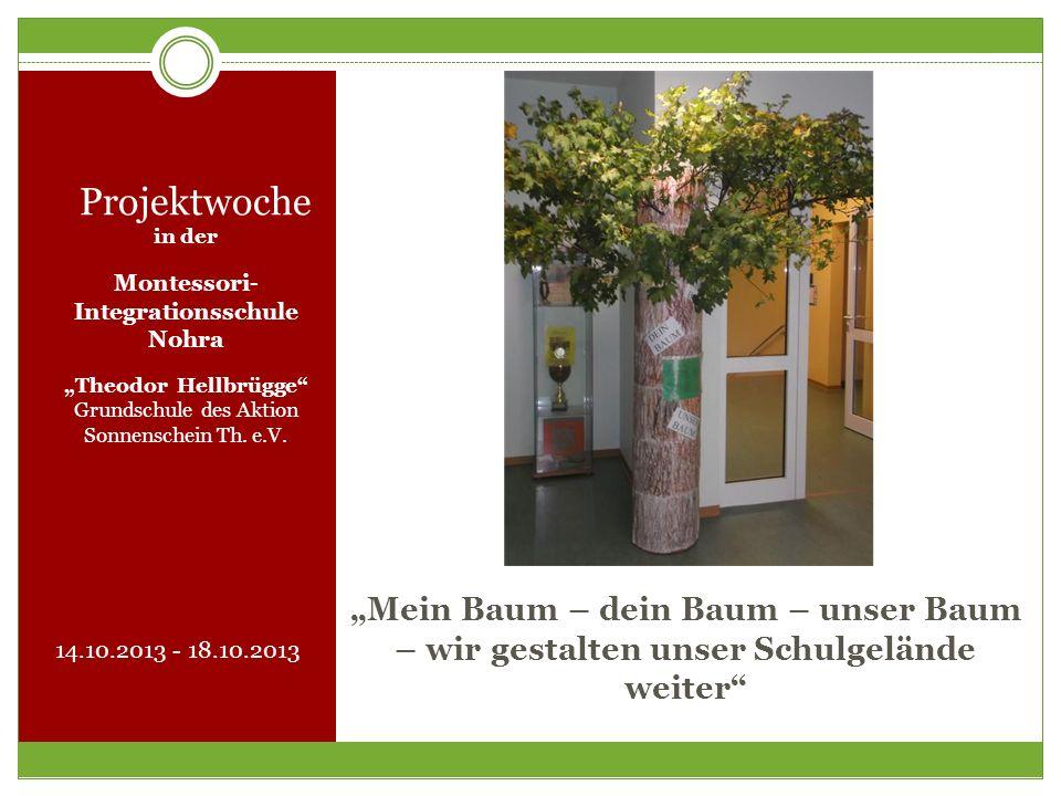 Mein Baum – dein Baum – unser Baum – wir gestalten unser Schulgelände weiter Projektwoche in der Montessori- Integrationsschule Nohra Theodor Hellbrüg