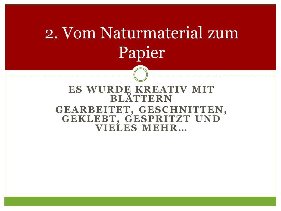 ES WURDE KREATIV MIT BLÄTTERN GEARBEITET, GESCHNITTEN, GEKLEBT, GESPRITZT UND VIELES MEHR… 2. Vom Naturmaterial zum Papier