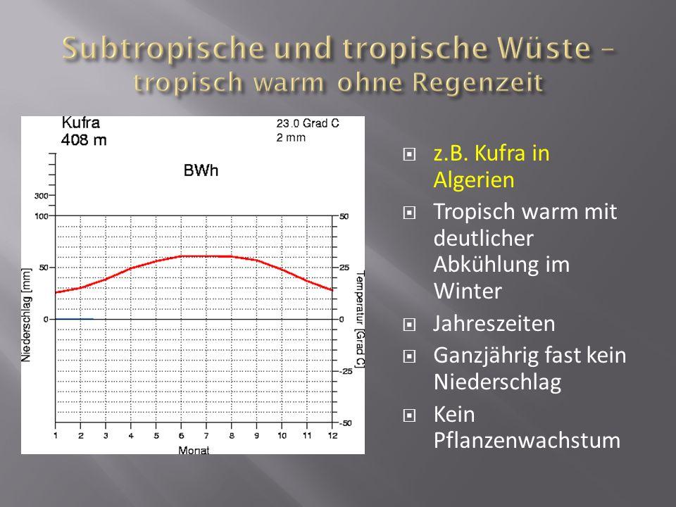 z.B. Kufra in Algerien Tropisch warm mit deutlicher Abkühlung im Winter Jahreszeiten Ganzjährig fast kein Niederschlag Kein Pflanzenwachstum