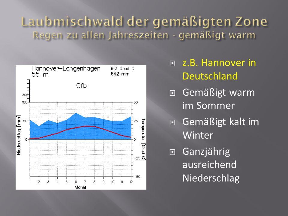 z.B. Hannover in Deutschland Gemäßigt warm im Sommer Gemäßigt kalt im Winter Ganzjährig ausreichend Niederschlag