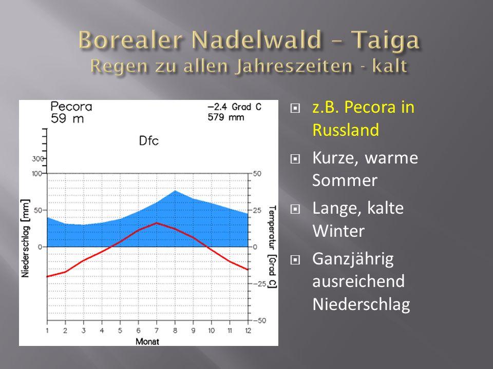 z.B. Pecora in Russland Kurze, warme Sommer Lange, kalte Winter Ganzjährig ausreichend Niederschlag