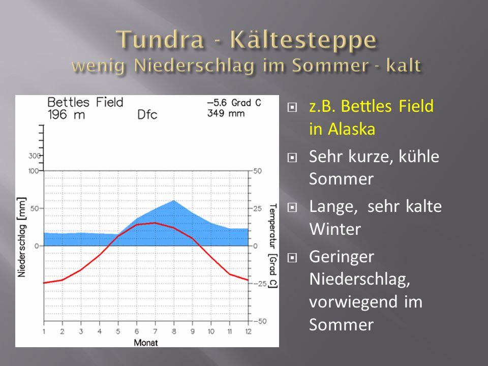 z.B. Bettles Field in Alaska Sehr kurze, kühle Sommer Lange, sehr kalte Winter Geringer Niederschlag, vorwiegend im Sommer