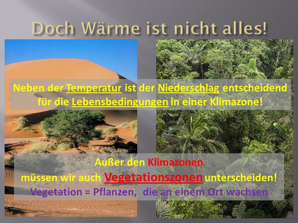 Neben der Temperatur ist der Niederschlag entscheidend für die Lebensbedingungen in einer Klimazone! Außer den Klimazonen müssen wir auch Vegetationsz