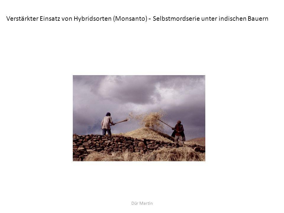 Dür Martin Verstärkter Einsatz von Hybridsorten (Monsanto) - Selbstmordserie unter indischen Bauern