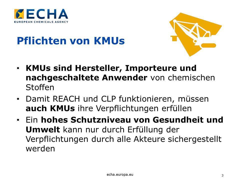 4 ECHAs Dilemma REACH kann aus der Sicht von KMUs als großer Aufwand angesehen werden ECHA muß für die Umsetzung von REACH sorgen ECHA kann keine Ausnahmen für KMUs schaffen, wenn diese im Gesetz nicht vorgesehen sind ECHA kann Unterstützung zur Bewältigung des Aufwands bieten
