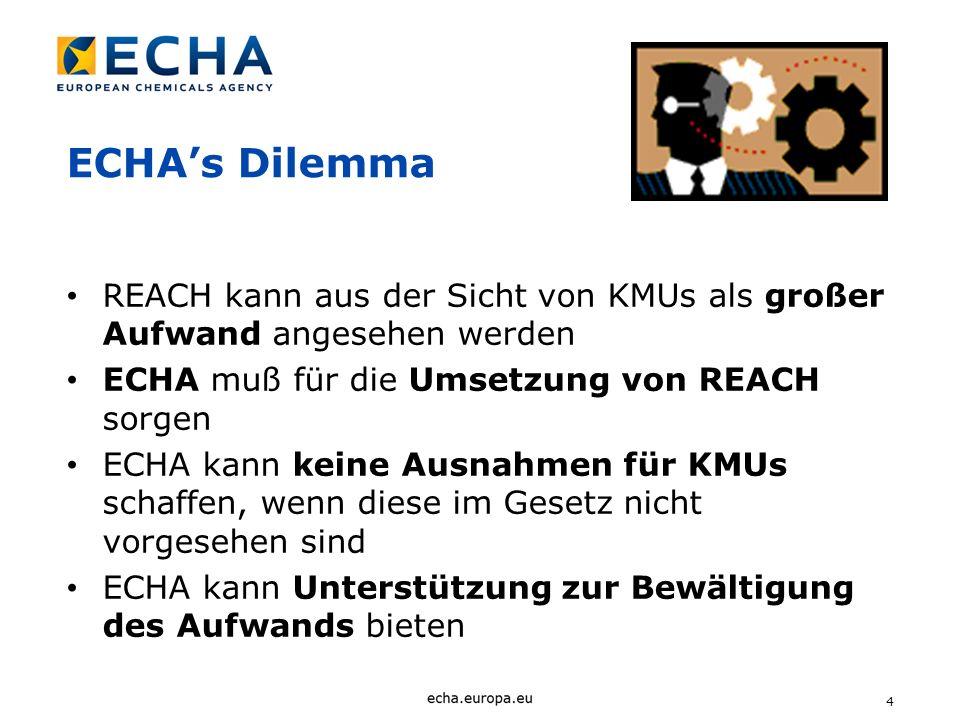4 ECHAs Dilemma REACH kann aus der Sicht von KMUs als großer Aufwand angesehen werden ECHA muß für die Umsetzung von REACH sorgen ECHA kann keine Ausn