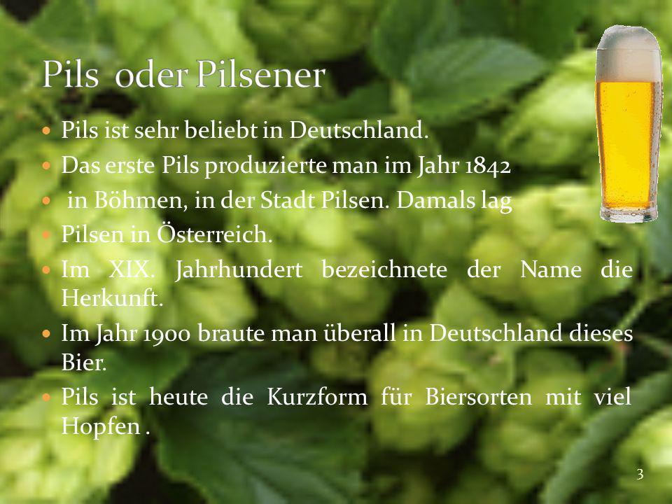 Pils ist sehr beliebt in Deutschland. Das erste Pils produzierte man im Jahr 1842 in Böhmen, in der Stadt Pilsen. Damals lag Pilsen in Österreich. Im