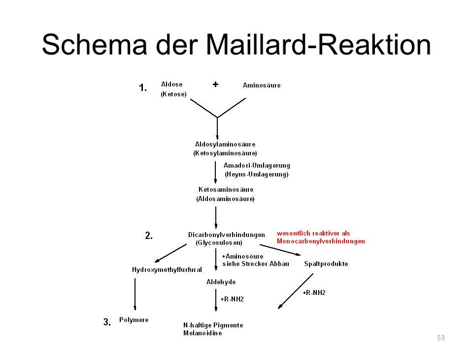 53 Schema der Maillard-Reaktion
