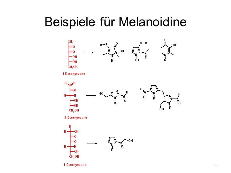55 Beispiele für Melanoidine