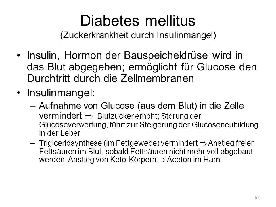 57 Diabetes mellitus (Zuckerkrankheit durch Insulinmangel) Insulin, Hormon der Bauspeicheldrüse wird in das Blut abgegeben; ermöglicht für Glucose den