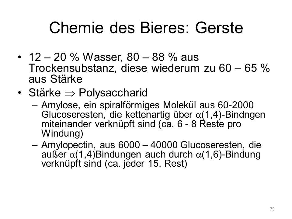 75 Chemie des Bieres: Gerste 12 – 20 % Wasser, 80 – 88 % aus Trockensubstanz, diese wiederum zu 60 – 65 % aus Stärke Stärke Polysaccharid –Amylose, ei