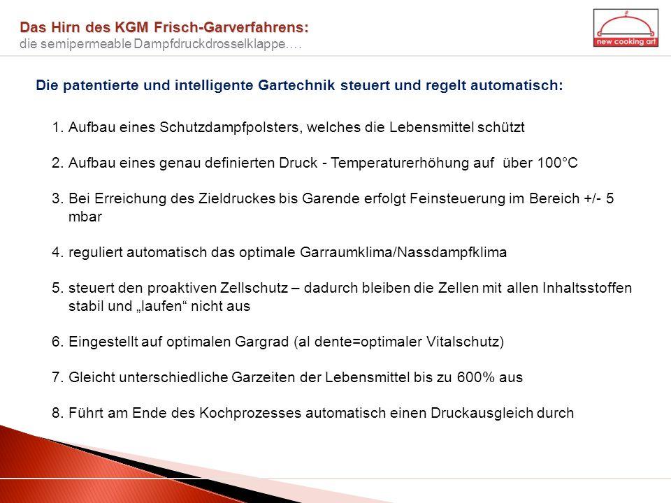 Das Hirn des KGM Frisch-Garverfahrens: Das Hirn des KGM Frisch-Garverfahrens: die semipermeable Dampfdruckdrosselklappe…. 1.Aufbau eines Schutzdampfpo