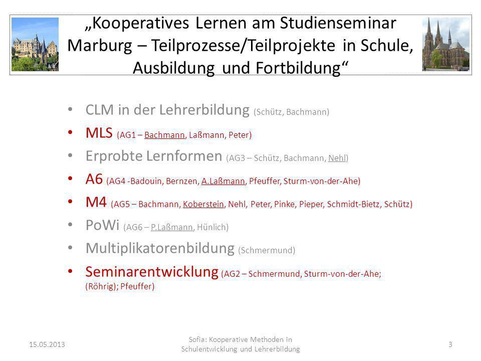 Kooperatives Lernen am Studienseminar Marburg – Teilprozesse/Teilprojekte in Schule, Ausbildung und Fortbildung CLM in der Lehrerbildung (Schütz, Bach