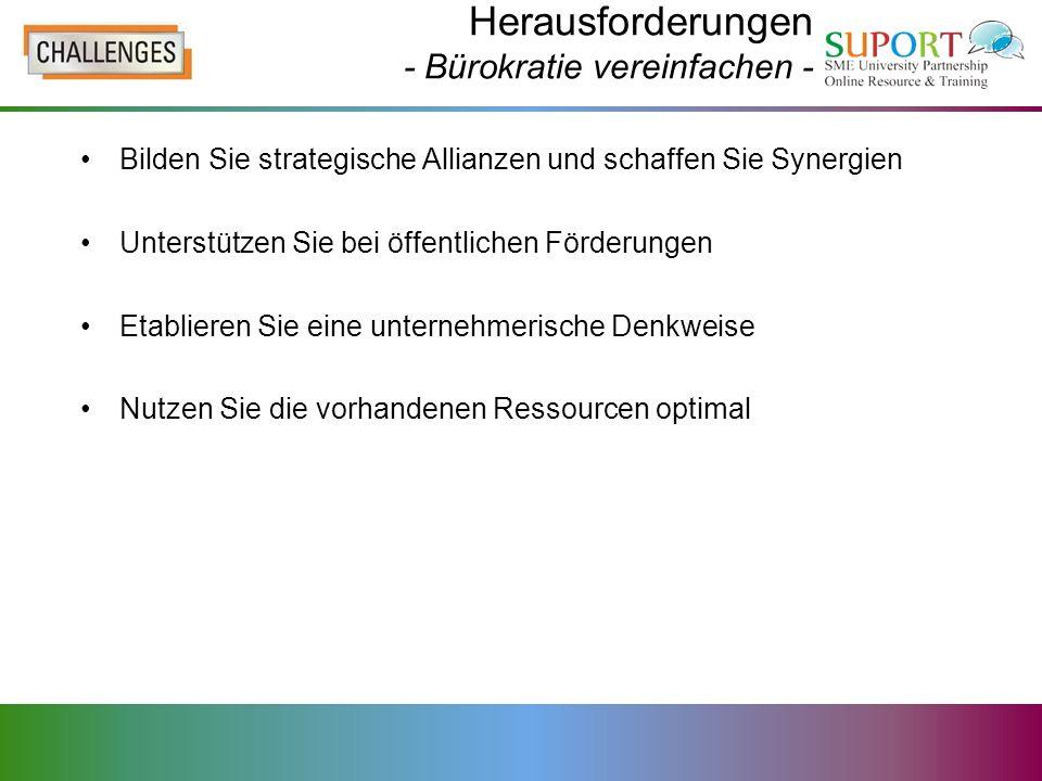 Herausforderungen - Bürokratie vereinfachen - Bilden Sie strategische Allianzen und schaffen Sie Synergien Unterstützen Sie bei öffentlichen Förderung