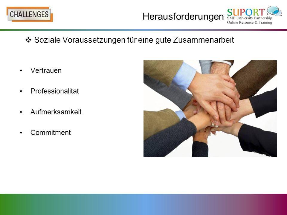 Herausforderungen Vertrauen Professionalität Aufmerksamkeit Commitment Soziale Voraussetzungen für eine gute Zusammenarbeit