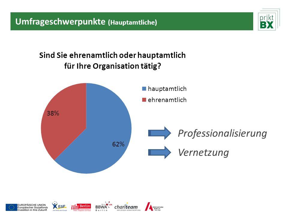 Umfrageschwerpunkte (Hauptamtliche) Professionalisierung Vernetzung