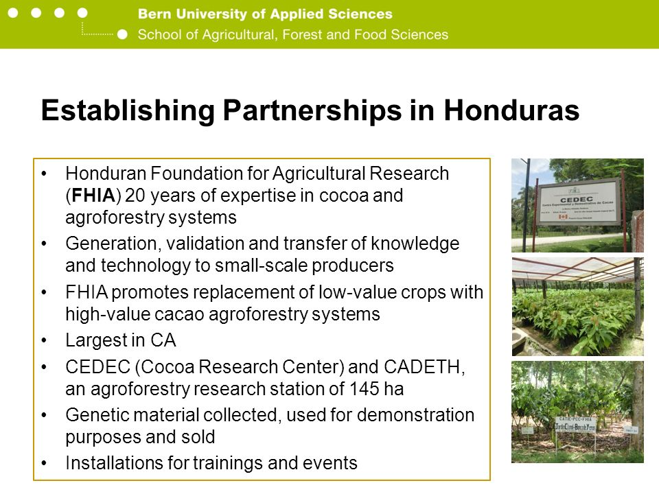Berner Fachhochschule Hochschule für Agrar-, Forst- und Lebensmittelwissenschaften HAFL Establishing Partnerships in Honduras PYMERURAL public-private program funded by Swisscontact Value chain and territorial local economic development Worked in partnership with Ministry of Agriculture, APROCACAHO, Funder, FHIA, GIZ, Ecomercados and Helvetas Aim: Improve financing mechanisms, support facilitators in development and of internal and external markets for cocoa products, and infrastructure improvements for better drying and fermenting practices Ecomercados is a development project financed by Swiss Development Cooperation in Honduras and Nicaragua Assists about 700 cocoa farmers in organic and Fair Trade certifications, and finding new niche markets