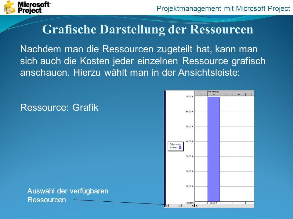 Grafische Darstellung der Ressourcen Projektmanagement mit Microsoft Project Nachdem man die Ressourcen zugeteilt hat, kann man sich auch die Kosten j