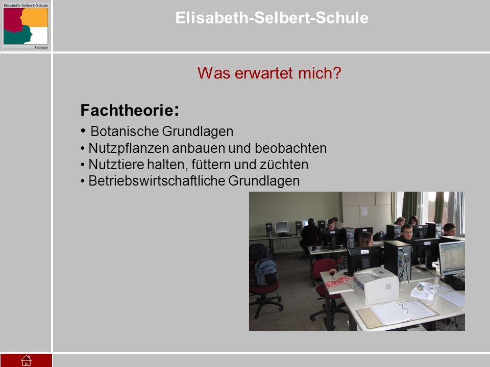 Elisabeth-Selbert-Schule Was erwartet mich? Fachtheorie : Botanische Grundlagen Nutzpflanzen anbauen und beobachten Nutztiere halten, füttern und züch