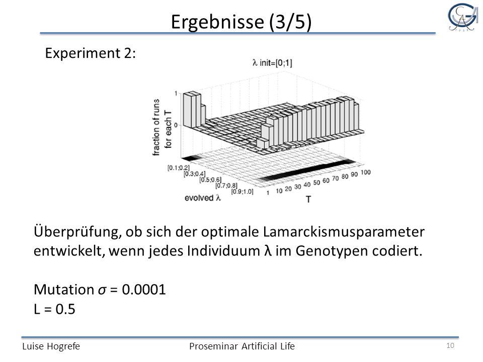 Ergebnisse (3/5) Luise HogrefeProseminar Artificial Life Experiment 2: 10 Überprüfung, ob sich der optimale Lamarckismusparameter entwickelt, wenn jedes Individuum λ im Genotypen codiert.