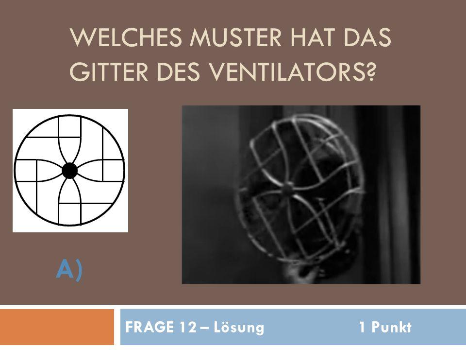 WELCHES MUSTER HAT DAS GITTER DES VENTILATORS FRAGE 12 – Lösung1 Punkt A)