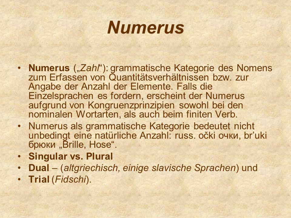 Numerus Numerus (Zahl): grammatische Kategorie des Nomens zum Erfassen von Quantitätsverhältnissen bzw. zur Angabe der Anzahl der Elemente. Falls die