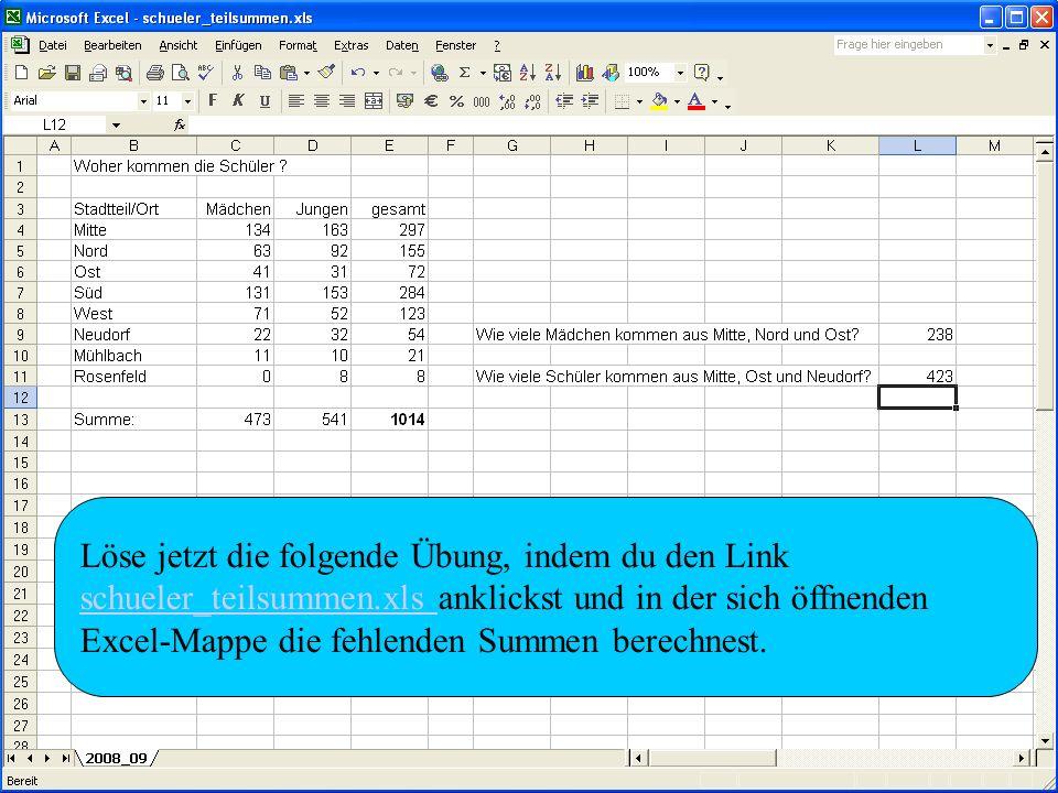 Löse jetzt die folgende Übung, indem du den Link schueler_teilsummen.xls schueler_teilsummen.xls anklickst und in der sich öffnenden Excel-Mappe die f