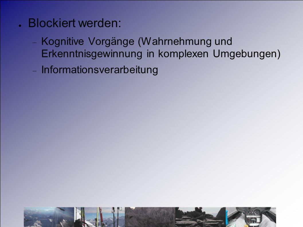 Blockiert werden: Kognitive Vorgänge (Wahrnehmung und Erkenntnisgewinnung in komplexen Umgebungen) Informationsverarbeitung