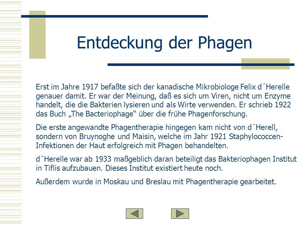 Entdeckung der Phagen Erst im Jahre 1917 befaßte sich der kanadische Mikrobiologe Felix d´Herelle genauer damit.