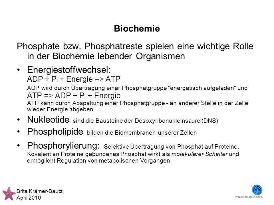 Brita Krämer-Bautz, April 2010 Biochemie Phosphate bzw. Phosphatreste spielen eine wichtige Rolle in der Biochemie lebender Organismen Energiestoffwec