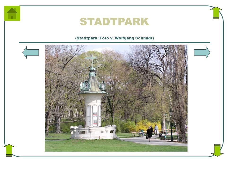 STADTPARK (Stadtpark: Foto v. Wolfgang Schmidt)