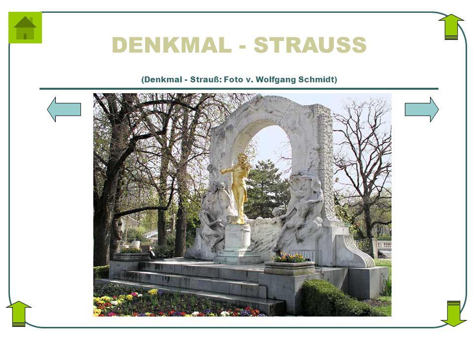 DENKMAL - STRAUSS (Denkmal - Strauß: Foto v. Wolfgang Schmidt)