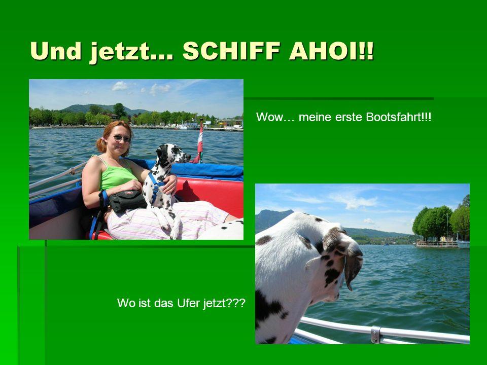 Und jetzt… SCHIFF AHOI!! Wow… meine erste Bootsfahrt!!! Wo ist das Ufer jetzt