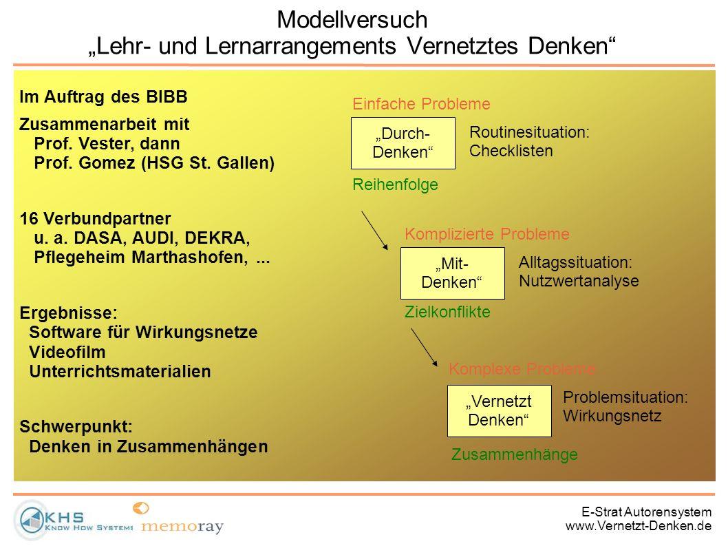 E-Strat Autorensystem www.Vernetzt-Denken.de Modellversuch Lehr- und Lernarrangements Vernetztes Denken Im Auftrag des BIBB Zusammenarbeit mit Prof. V