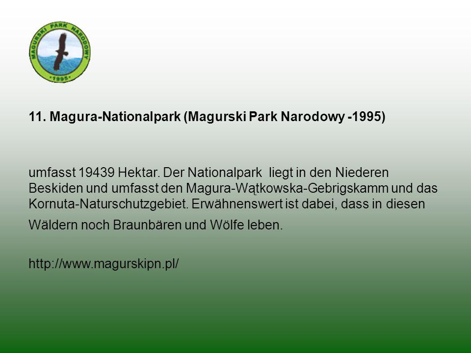 11. Magura-Nationalpark (Magurski Park Narodowy -1995) umfasst 19439 Hektar. Der Nationalpark liegt in den Niederen Beskiden und umfasst den Magura-Wą