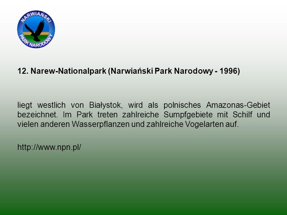 12. Narew-Nationalpark (Narwiański Park Narodowy - 1996) liegt westlich von Białystok, wird als polnisches Amazonas-Gebiet bezeichnet. Im Park treten