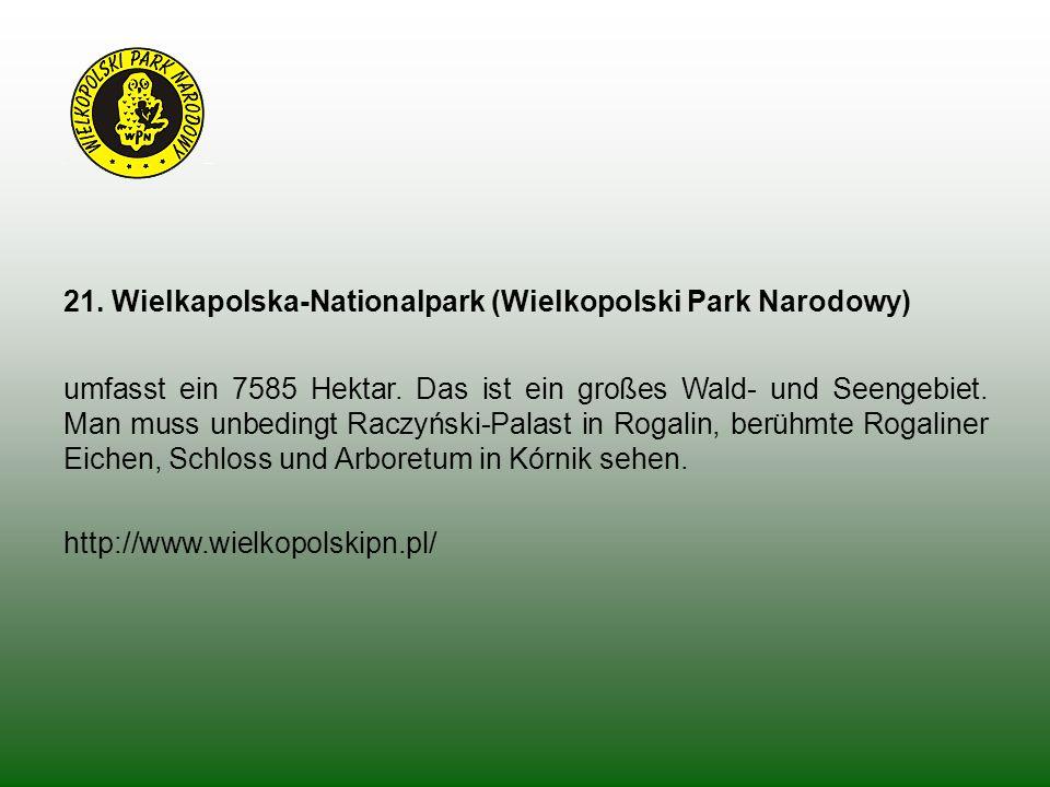 21. Wielkapolska-Nationalpark (Wielkopolski Park Narodowy) umfasst ein 7585 Hektar. Das ist ein großes Wald- und Seengebiet. Man muss unbedingt Raczyń