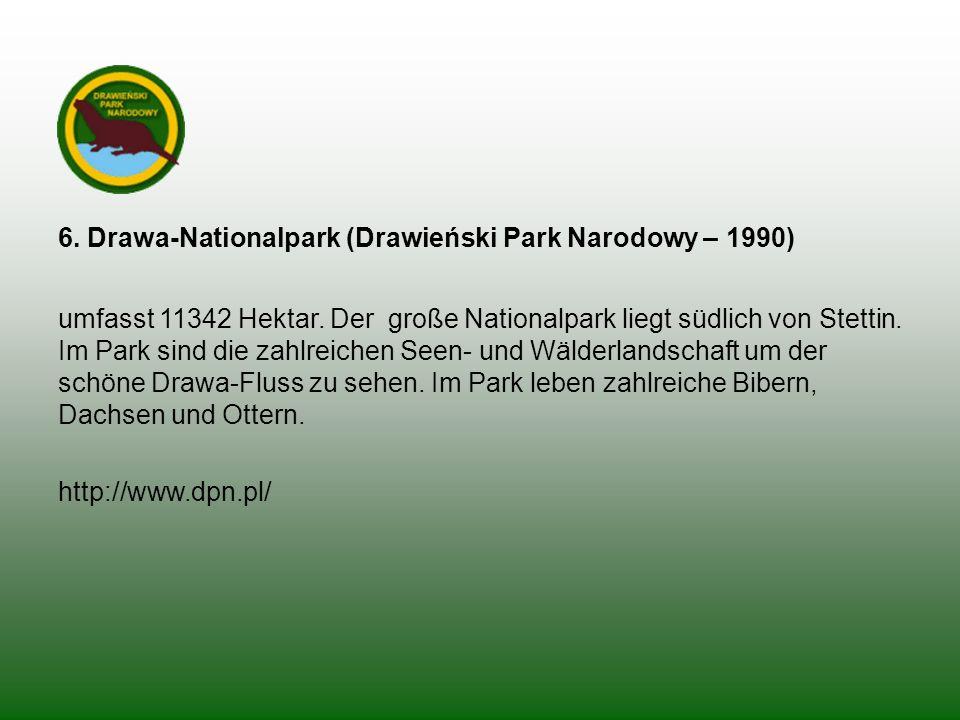 6. Drawa-Nationalpark (Drawieński Park Narodowy – 1990) umfasst 11342 Hektar. Der große Nationalpark liegt südlich von Stettin. Im Park sind die zahlr