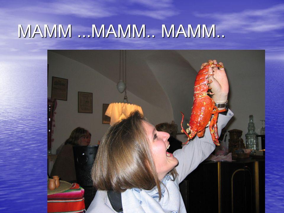 MAMM...MAMM.. MAMM..