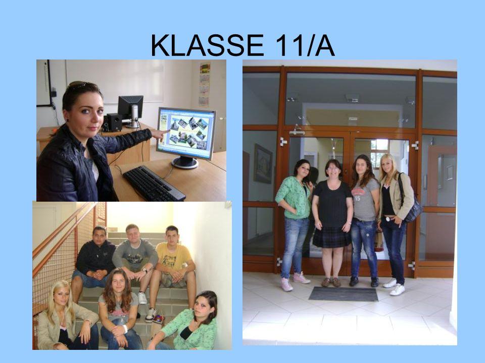 P R O J E K T Thema: Baden Württemberg Lerner: 11 Dauer: 23 Stunden Ort: Rázsó Imre Fachmittelschule und Berufsschule, Körmend