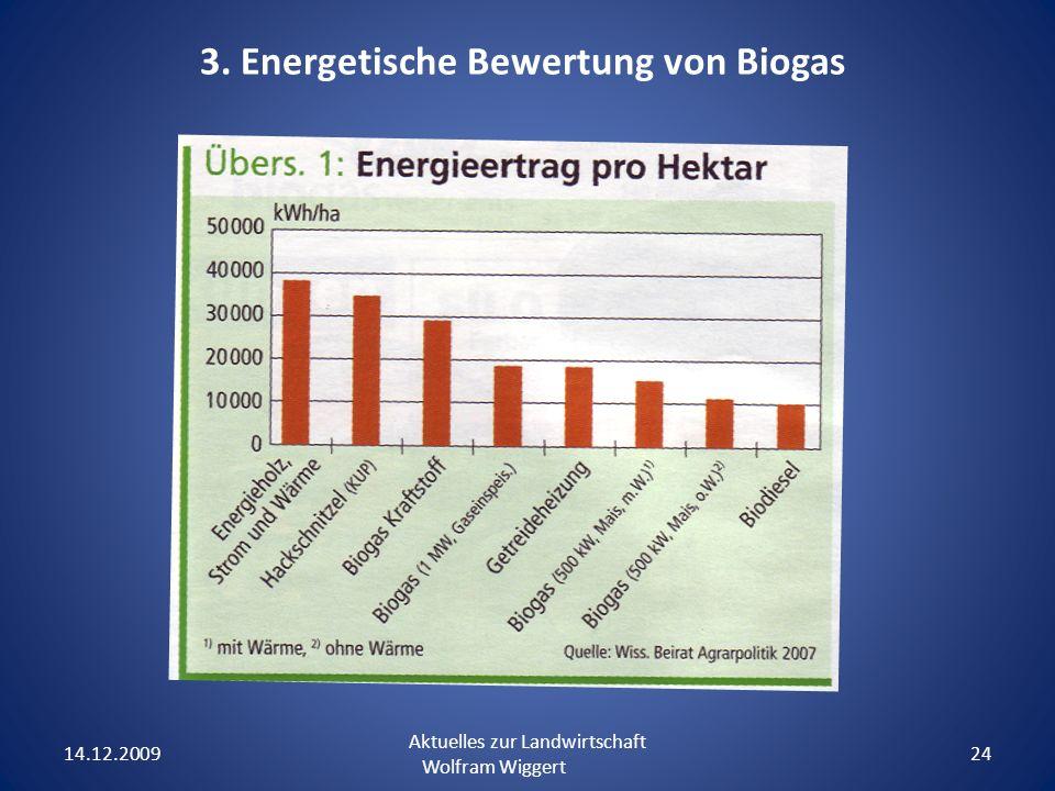 14.12.2009 Aktuelles zur Landwirtschaft Wolfram Wiggert 24 3. Energetische Bewertung von Biogas